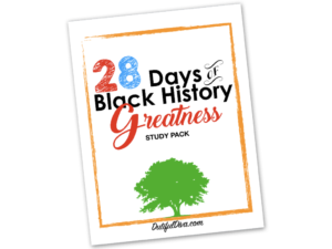 28 Day of Black History Greatness